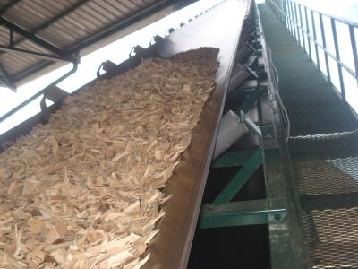 hệ thống băng tải dăm gỗ